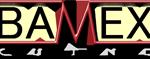 Logo BAMEX