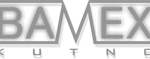 Logo BAMEX Kutno