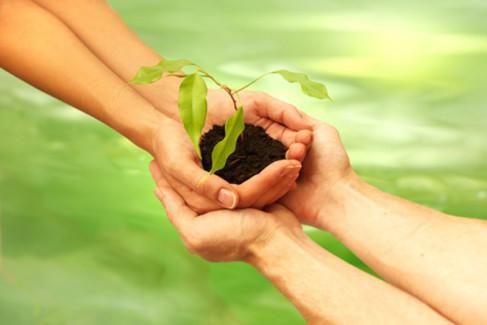 Dłonie obejmujące inne dłonie z kwiatkiem jako metafora współwłasności