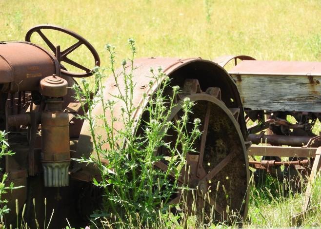 Gospodarstwo rolne